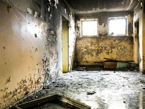 bathroom mold health black mold symptoms and health effects hgtv