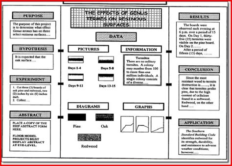 Science Fair Project Template science fair project board template project