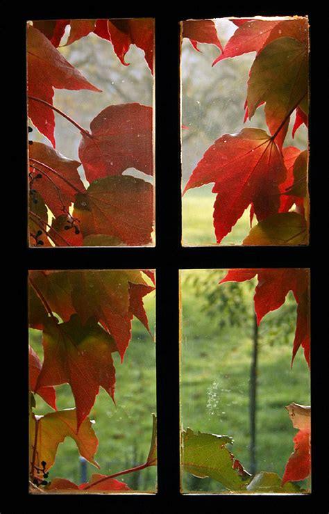 4 diy autumn home decor craft ideas using leaves the 4 diy autumn home decor craft ideas using leaves the