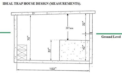 trap house plans shooting house plans 17 best images about a shooting house on pinterest a deer deer
