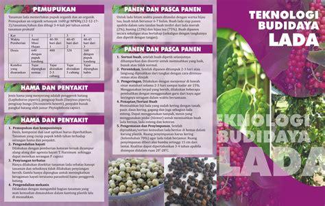 desain kalender pertanian desain 7 brosur dinas pertanian lung utara