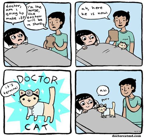 Make A Meme Comic - 7 new school cat webcomics that purr right off the page