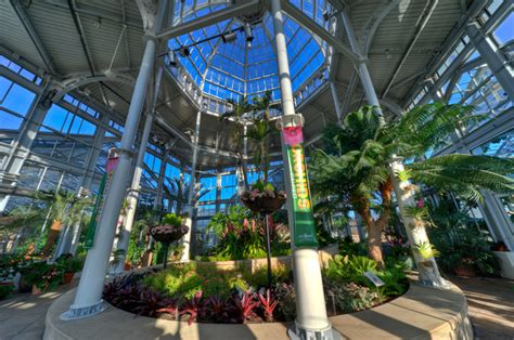 Lewis Ginter Gardens by Orchids Galore In The Conservatory Now Through April 22