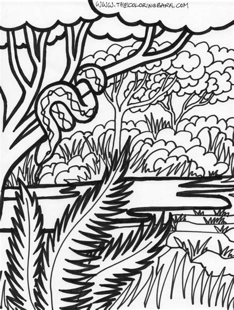 jungle tree coloring page 111 best images about jungle safari vbs on pinterest