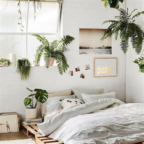 plante dans la chambre du vert dans mon lit la princesse aux bidouilles