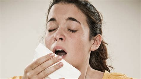 best antihistamine for allergies the 4 best antihistamines