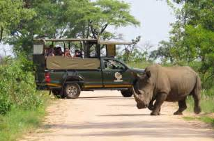 Opulence Kruger Safari Express Short Kruger Park Safari Tour