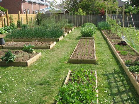 self sufficient vegetable garden raised garden beds make gardening easier