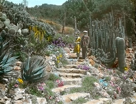 Botanical Gardens California Pin By J Demers On Places I Visited Or Lived Pinterest