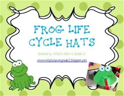 frog cycle template the world s catalog of ideas