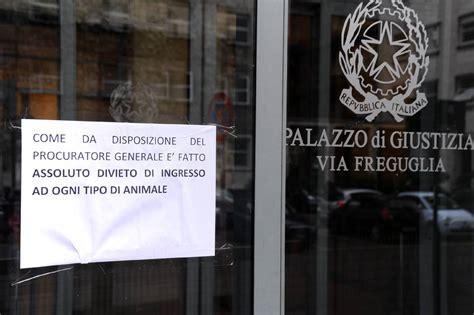 divieto d ingresso ai cani tribunale di ingresso vietato agli animali