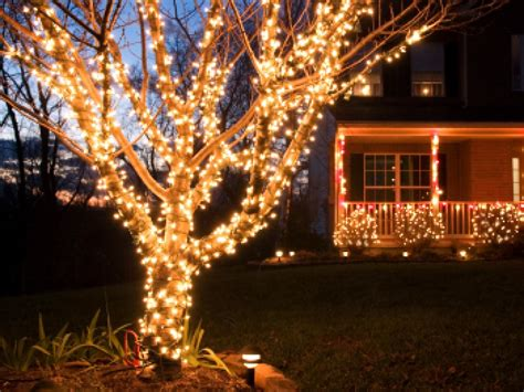 how to string lights on tree branches buyers guide for the best outdoor lighting diy