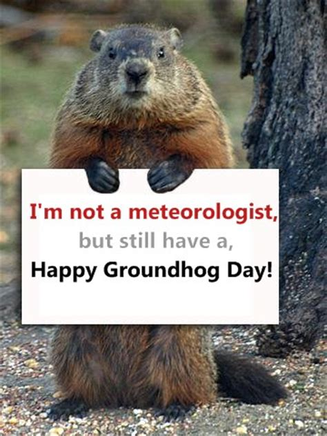 groundhog day time happy groundhog day images wishes and pictures