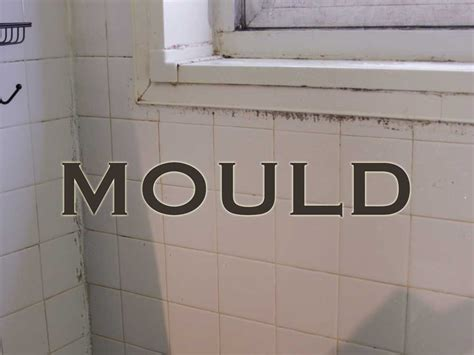 mold in bathroom walls mold on bathroom walls home design