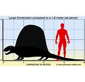 Prehistoricworldofyajur  T Rex Mammoth Triceratops
