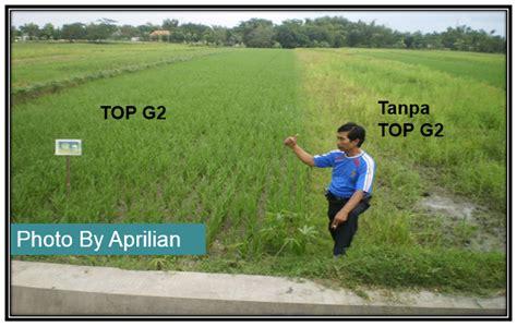 Pupuk Top G2 Pupuk Organik Pupuk Hwi jual pupuk organik cair top g2