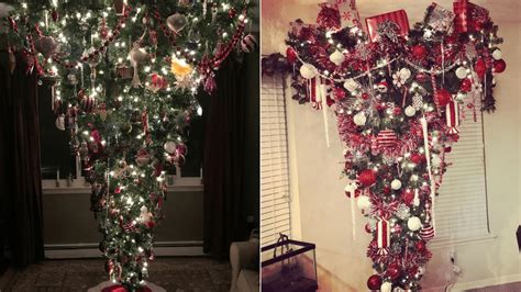 why a tree for christmas are trees traditional or disrespectful