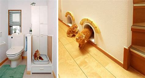cat friendly home design unbelievable cat friendly house design from japan