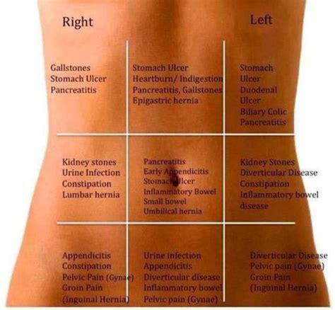 stomach ache your abdominal human n health