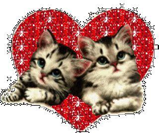 imágenes que se mueven de amor de verdad im 225 genes de amor que se mueven im 225 genes de desamor