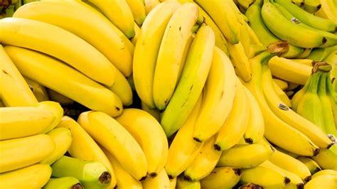 Wie Lagert Bananen by Bananen Richtig Lagern Gutekueche At