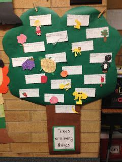 Things To Make Out Of Construction Paper - to introduce living things we talked about the