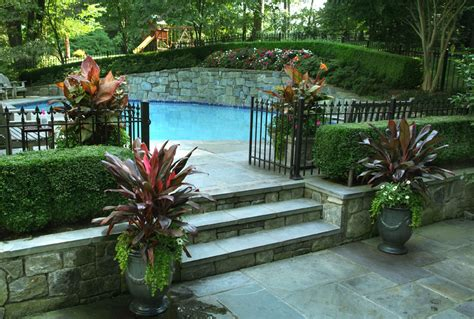 Pool Planters by Pool Needs Plants