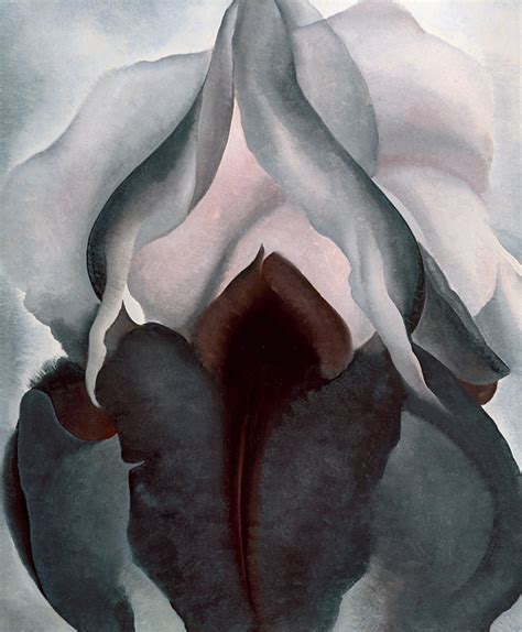 georgia okeeffe phaidon focus what do you see in georgia o keeffe s flowers art agenda phaidon