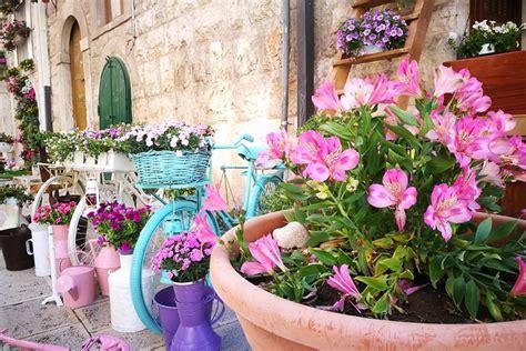 fiori tutto l anno corato l invito della pro loco 171 siano balconi in