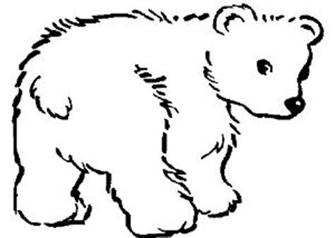 imagenes de animales carnivoros para colorear imagenes de animales carnivoros para colorear