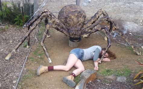 How To Make Home Decorations by Building A Giant Spider The House That Worked Out