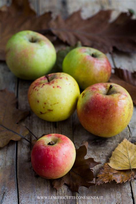 cucinare con le mele la mela l ingrediente di stagione le mie ricette con e senza