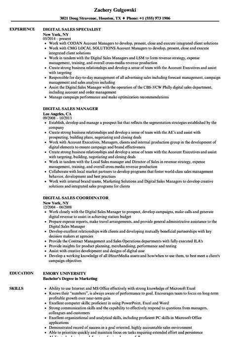 Digital Copywriter Sle Resume by Digital Sales Resume Sles Velvet