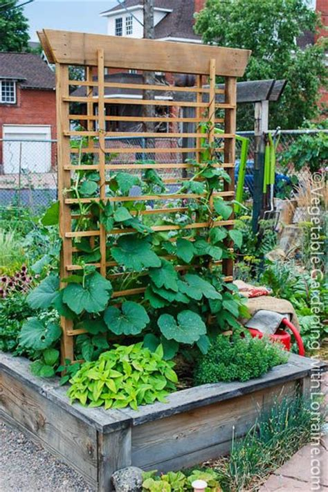 Vegetable Garden Trellis Ideas Beautiful Trellis Vegetable Garden
