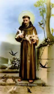 St Francis Francis Of Assisi Prayer Card