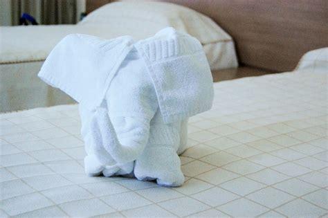 Towel Origami Elephant - towel elephant 4 free photos highres