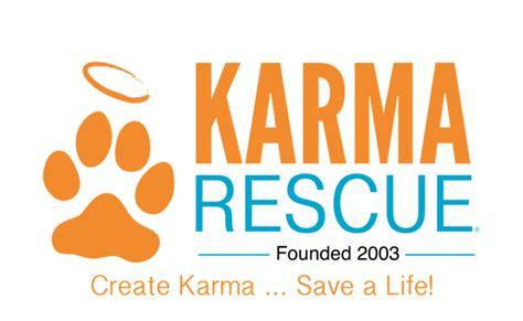 karma puppy rescue karma rescue