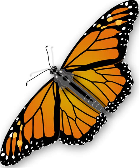 free butterfly clipart butterfly clip at clker vector clip