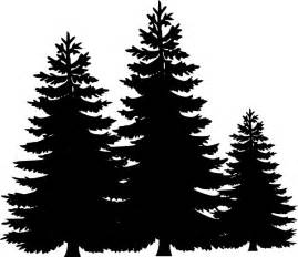Pine Tree Outline by Pine Trees Clipart Black And White Clipartsgram