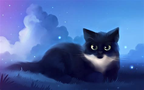 hd wallpaper of cat for mobile digital art creative 58 wallpapers wallpapers hd