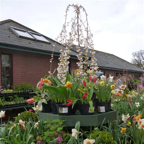 visit  garden centre  derwen college open daily