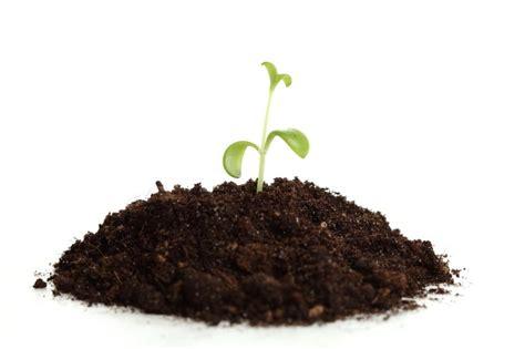Planter Soil by Get The Quot Dirt Quot On Soil Workshop S Greenhouses