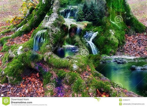 Forest Render fantasy land stock photo image 47265471