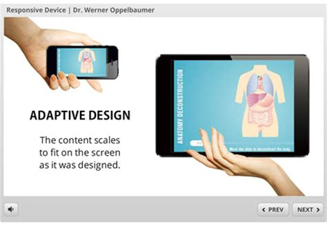 design expert learning an expert view on responsive design for e learning the
