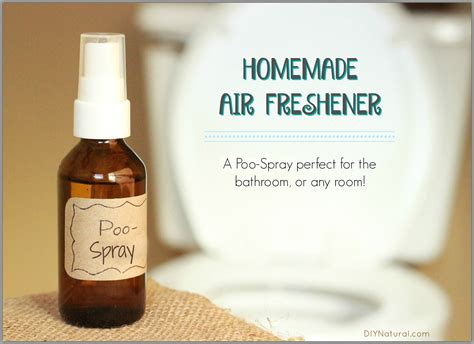 diy bathroom deodorizer homemade air freshener a natural diy poo spray