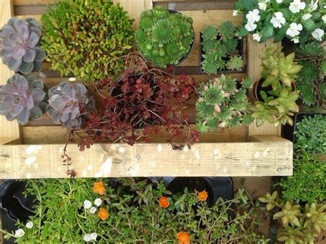decorar rincon con plantas buenas ideas para decorar con plantas