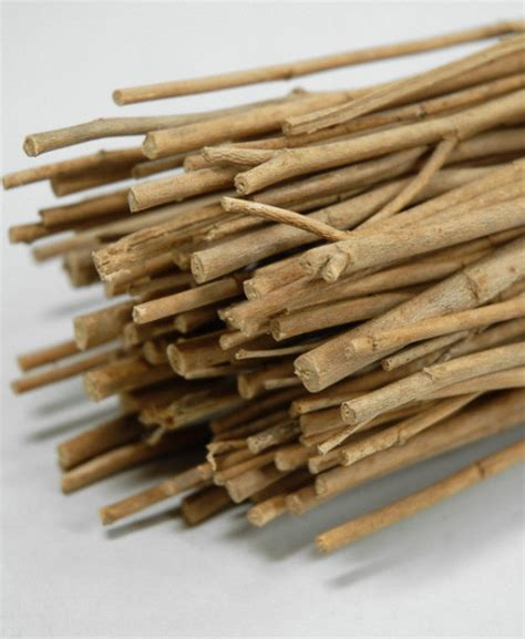 Home Decor Sticks by Sticks Traditional Home Decor By Save On Crafts