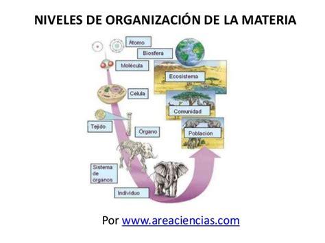 trascender los niveles de niveles de organizaci 243 n de la materia