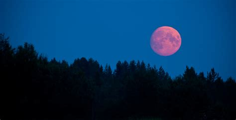 pink moon meaning full moon in taurus 2014 autos post