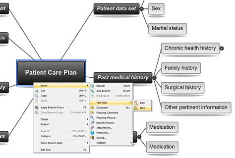 nursing concept map concept map for care plan search results calendar 2015